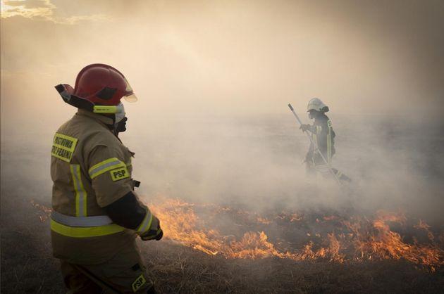 Πυρκαγιά στο μεγαλύτερο εθνικό πάρκο της Πολωνίας - Στις φλόγες 60.000