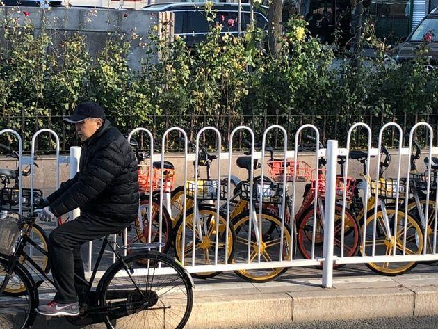 中国の街に並んだシェア自転車(2019年・北京)