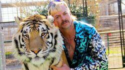 'A Máfia dos Tigres' é um oásis de bizarrices em uma realidade ainda mais
