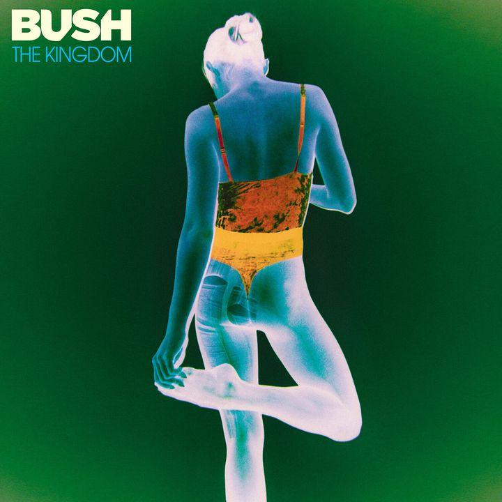 """The Kingdom"" follows Bush's 2017 album, ""Black and White Rainbows."""