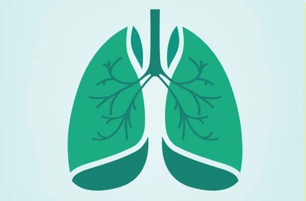 Por que os respiradores mecânicos são tão importantes na luta contra o