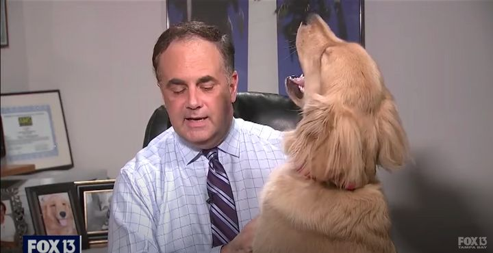 The moment meteorologist Paul Dellegatto is interrupted by Brody mid-broadcast.