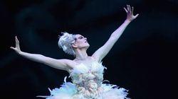 Cirque du Soleil apresenta especial online no YouTube nesta