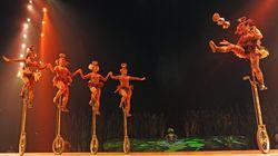 Québecor dit vouloir procéder au sauvetage du Cirque du
