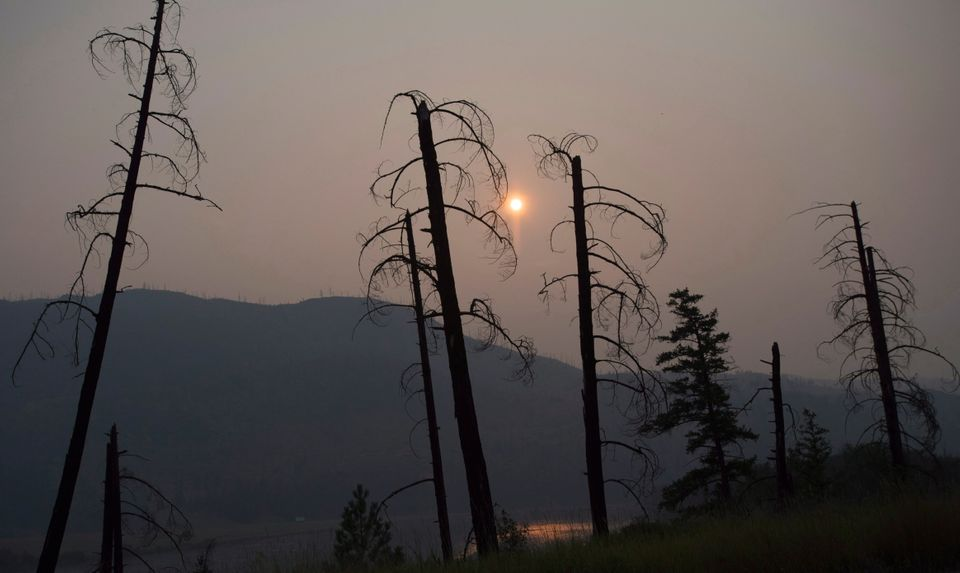 Burnt trees are pictured in front of a smoke-filled sky near Old Fort, B.C., on July 11,