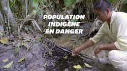 Une marée noire oblige ces indigènes d'Amazonie à sortir du