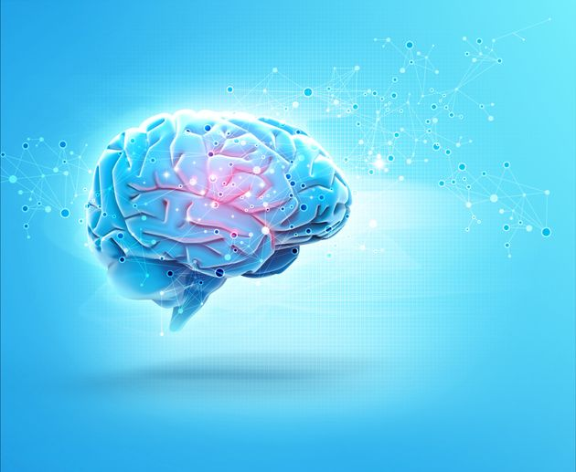 Neurociencia y
