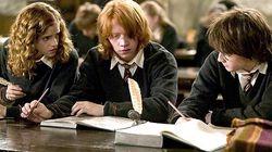 Avez-vous remarqué cette anomalie devant Harry Potter sur TF1