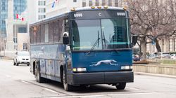 Greyhound Canada To Halt All Bus Service As Ridership