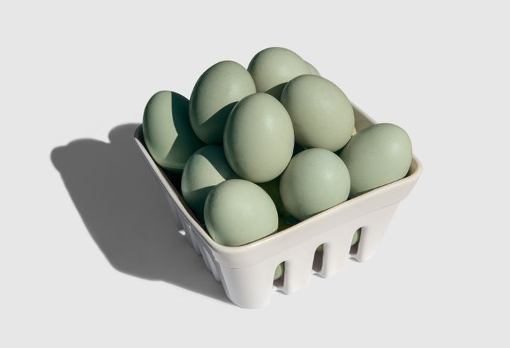 Eggs from Araucana chickens range from greens to blues.