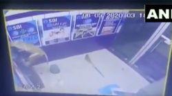 インドのサル、ATMを襲う。パネルを剥ぎ取ってユサユサと揺さぶり……。一部始終をセキュリティカメラが捉える