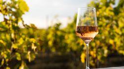 Curso de cata de vinos españoles (5): Rosado de
