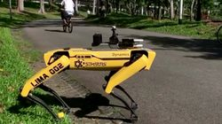Singapore Officials Using 'Robodogs' To Enforce Social Distancing In