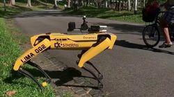 A Singapore arriva il robot