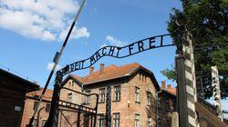 La caída de los nazis, la normalidad y el