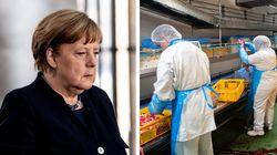 In Germania torna a crescere il contagio. E la paura riparte dai mattatoi: 600 operai