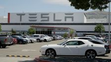 Tesla Reopens California Car Factory, Defying County Coronavirus Orders