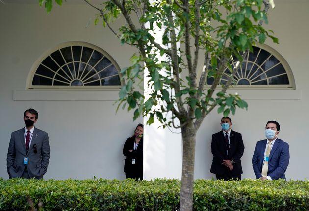 코로나19 브리핑을 지켜보는 백악관 직원들. 백악관의 새로운 지침이 공지됨에 따라 이 자리에 참석한 모든 직원들은 마스크를 착용했다. 2020년