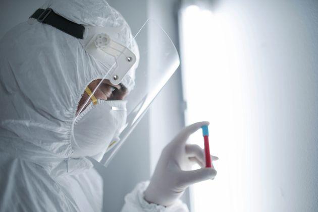 Au moins un million d'échantillons sanguins seront prélevés et analysés...