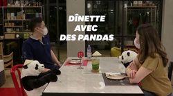 Ce restaurant utilise des pandas en peluche pour la distanciation