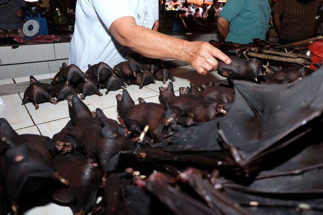 Η αγορά που εξακολουθεί να πουλά νυχτερίδες, φίδια και σαύρες παρά τον