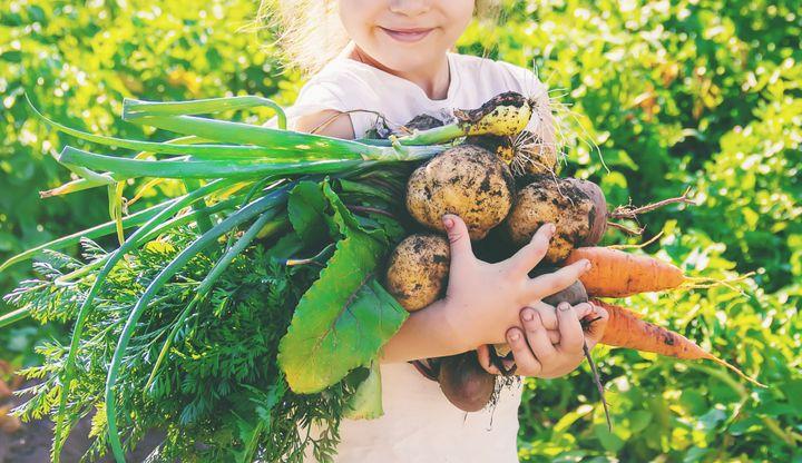 Η κηπουρική μπορεί να προσφέρει στην υγεία οφέλη από την κατανάλωση φρέσκων φρούτων και λαχανικών.