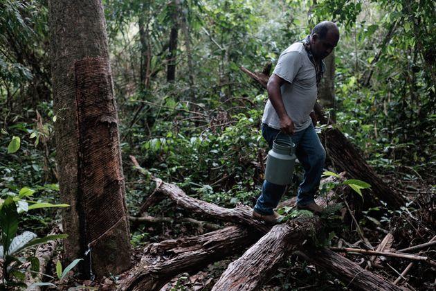 Seringueiro atua em lote de terra em Xapuri, no estado do