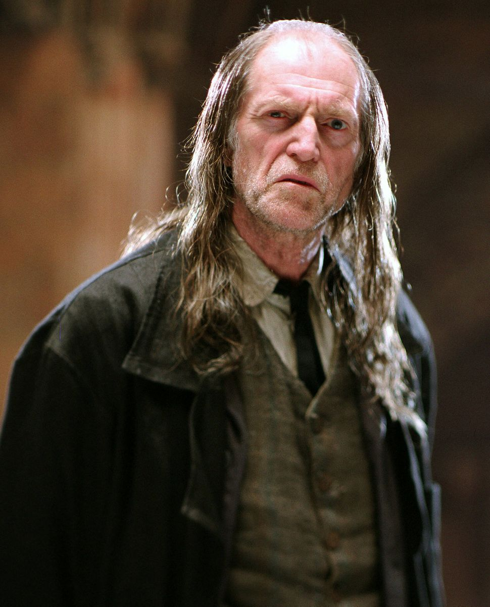 David as Argus Filch in the Harry Potter series