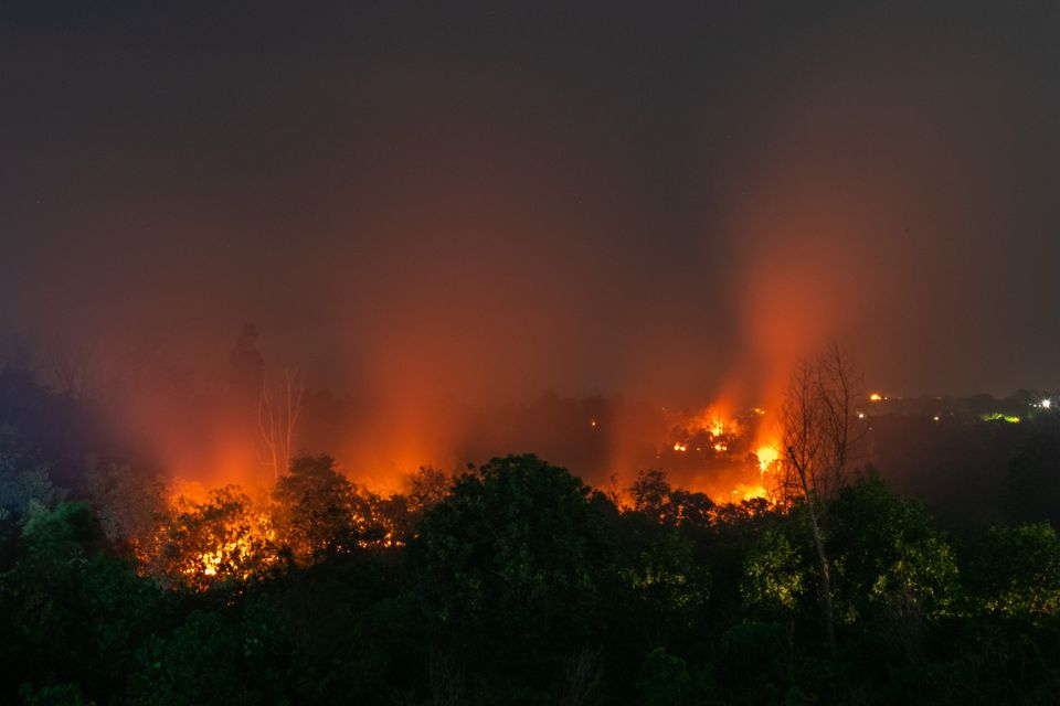 A forest fire in Riau Province, Indonesia, on March 1, 2020. These fires have been a mostly human-made...