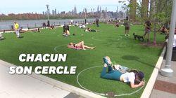 Des cercles tracés dans un parc de New York pour encourager la distance