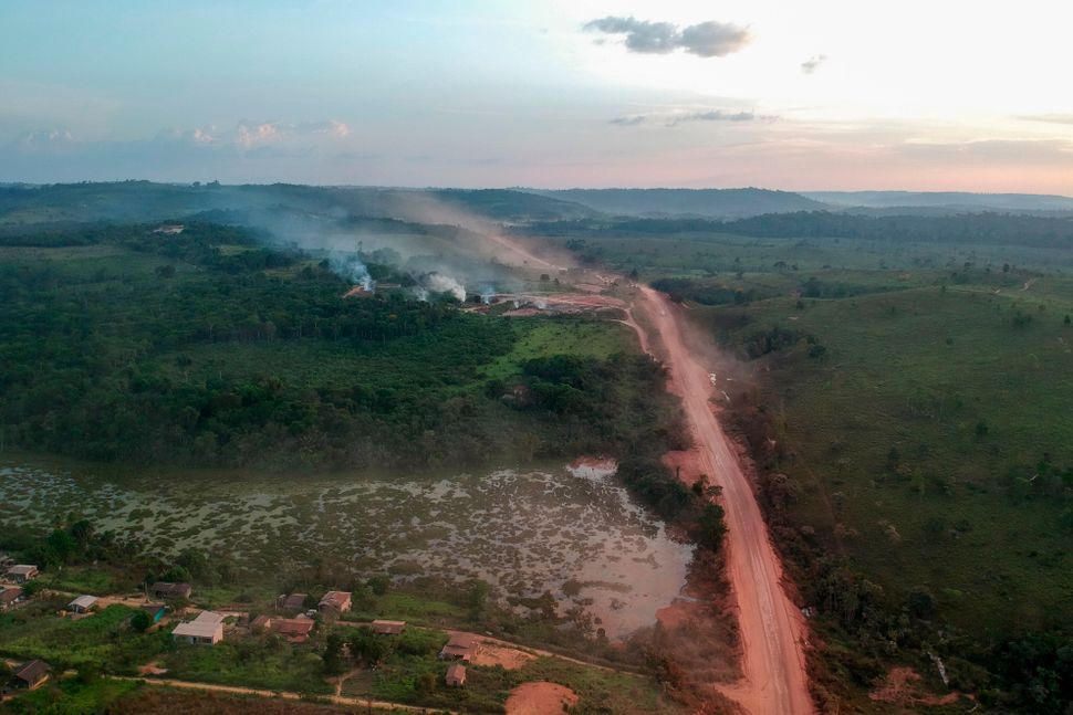 Brazilian president Jair Bolsonaro is only helping fuel rampant deforestation of the Amazon during the pandemic.