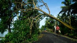 Mamata Says Cyclone Amphan's Devastation Greater Than COVID-19, 10 Dead In