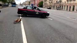 Η Εθνική Φρουρά της Μόσχας σταματάει την κυκλοφορία για μία οικογένεια από
