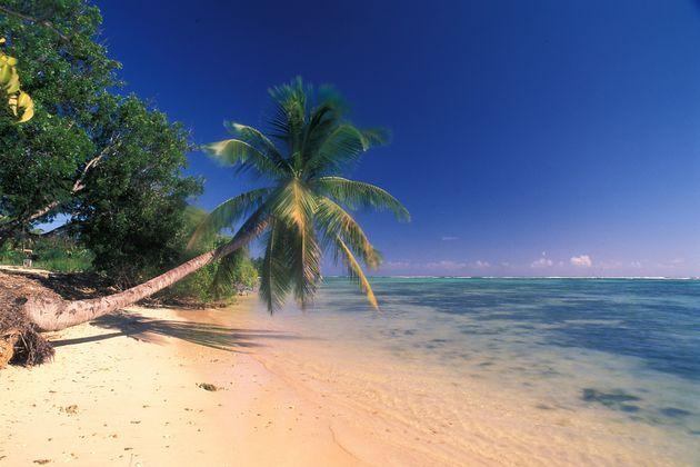 Une plage sur l'île de Marie-Galante en
