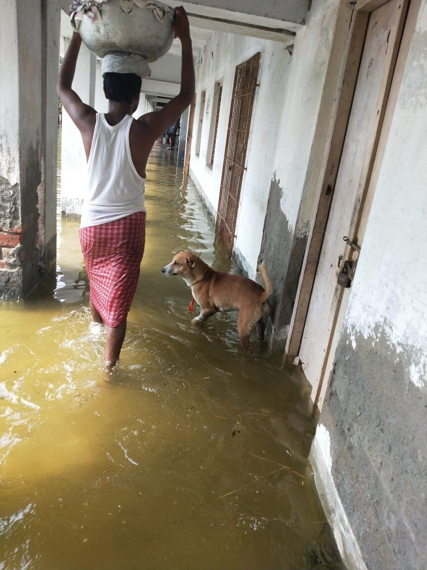 A man wades through water with a container of food for people who have taken shelter in the upper floors...