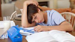 Les jeunes s'ennuient de l'école depuis le début de l'apprentissage à