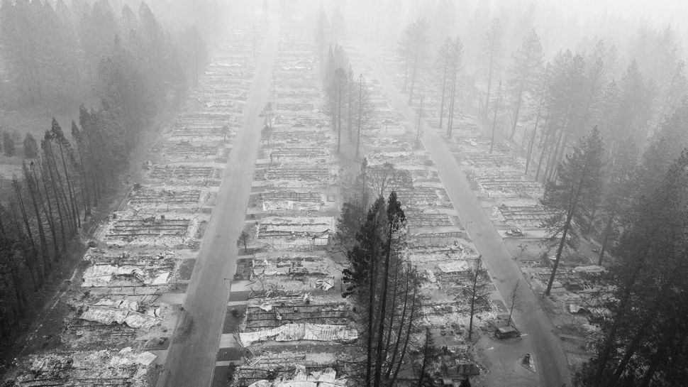 A burned neighborhood in Paradise, California, on Nov. 15, 2018.