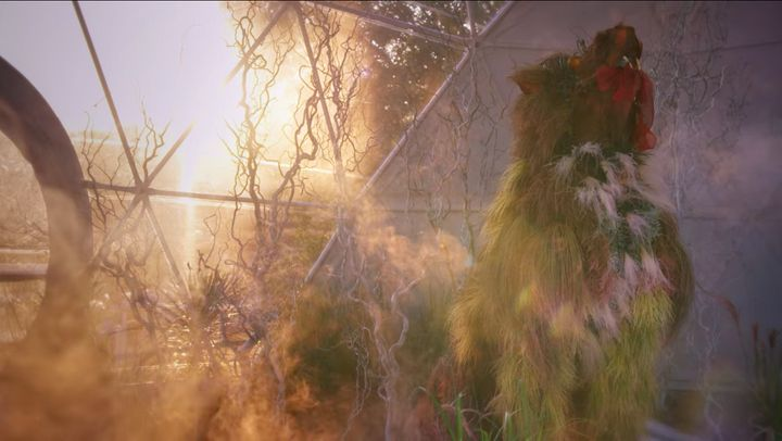 """The opening shot from """"The Big Flower Fight"""""""