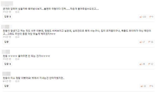 관련 방송 영상에 달린 네티즌