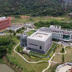 Coronavirus: la directrice du laboratoire de Wuhan nie toute