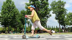 '8월14일 임시공휴일 지정 검토' 보도에 대한 청와대