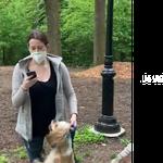 Elle dénonce une fausse agression à Central Park, son employeur la