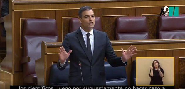 Pedro Sánchez este miércoles en el