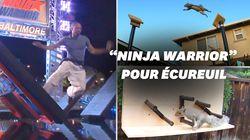 """Il construit un parcours digne de """"Ninja Warrior"""" pour les"""