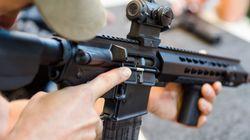 Le règlement sur les armes d'assaut est contesté en Cour