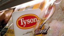Tyson Pork Plant In Iowa Shutters After Hundreds Of Workers Test Positive for COVID-19