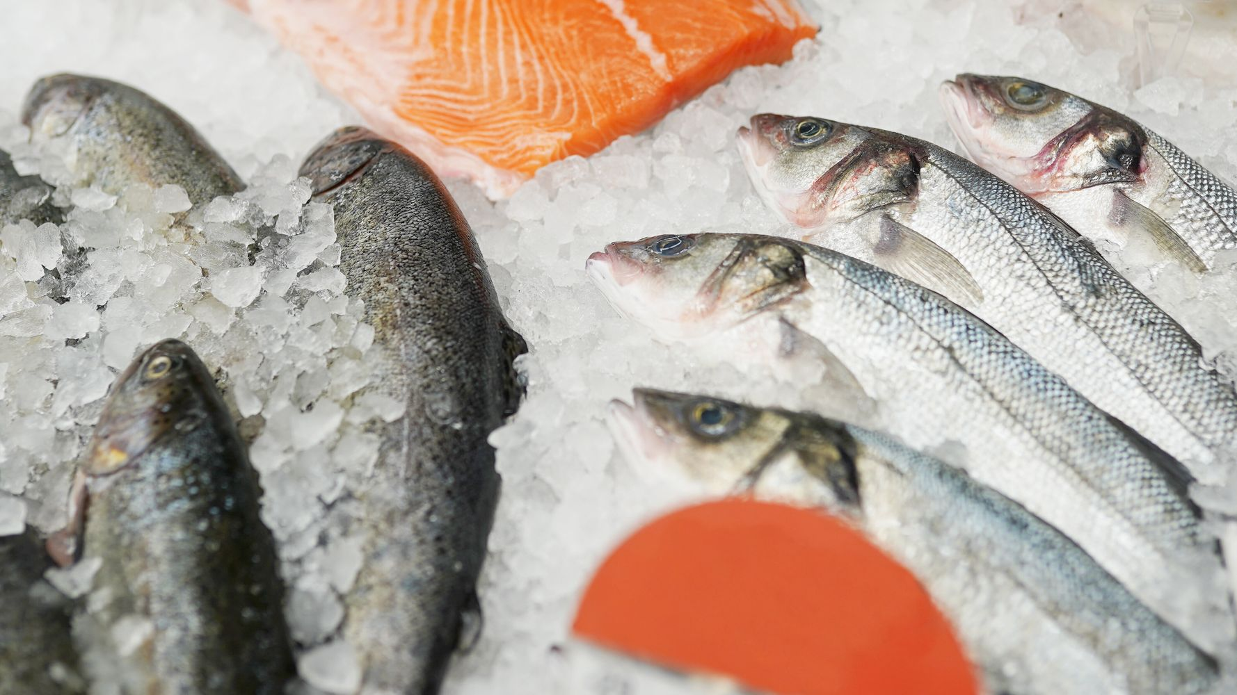 The Best Places To Buy Seafood Online, Including Fresh And Frozen Fish