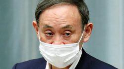 アベノマスク「保有することに意義がある」 菅官房長官、寄付の動きに対し