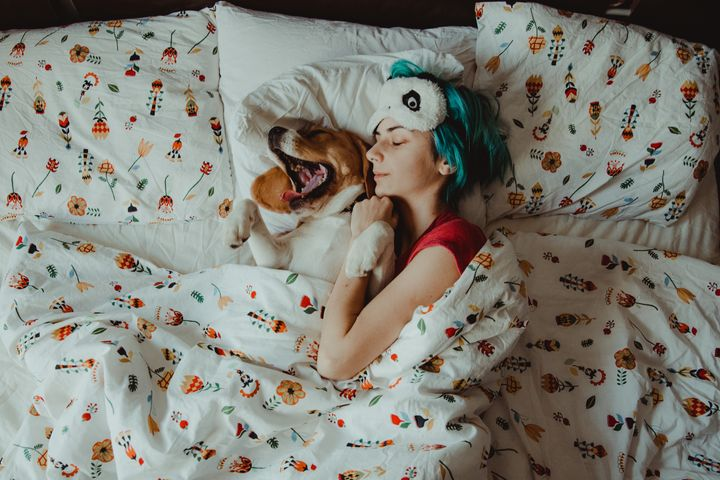 Υπνος με τον σκύλο στο κρεβάτι.