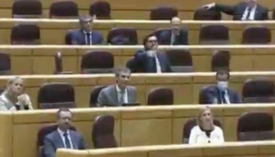 Los senadores del PP se van indignados por el discurso de un miembro de Más